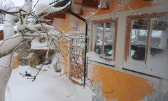 Winter bei uns dahoam
